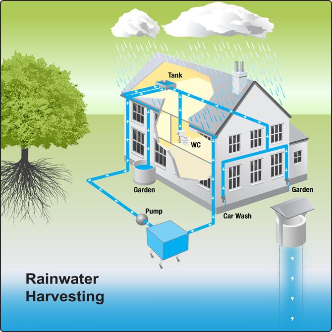 Save rain water essay